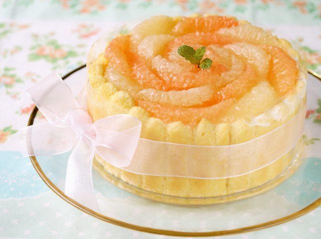 【AO入試エントリー可能!】フランス伝統菓子 シャルロット(1台持ち帰り) @ 和泉校本校